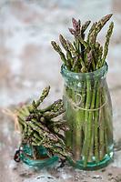 Europe/France/Pays de la Loire/49/Maine-et-Loire: Asperges vertes bio du Domaine d'Arvoir //Europe / France / Pays de la Loire / 49 / Maine-et-Loire: Organic green asparagus from Domaine d'Arvoir