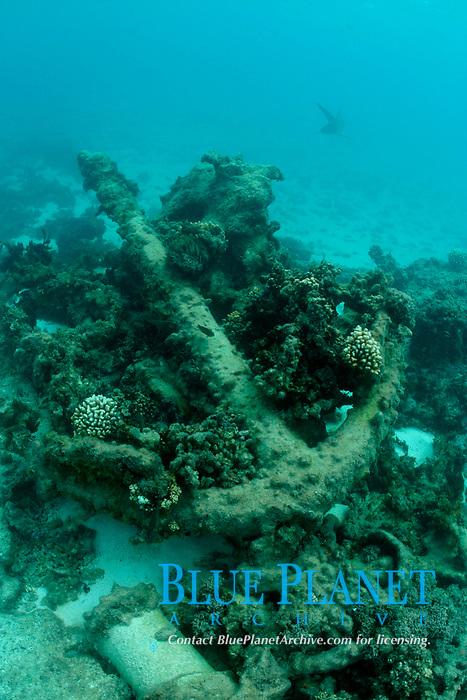 anchor, unknown shipwreck, Kure Atoll, Papahanaumokuakea Marine National Monument, Northwestern Hawaiian Islands, Hawaii, USA, Pacific Ocean