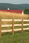 Red barn roof in field of high grass with wood fence Commonwealth of Virginia, Fine Art Photography by Ron Bennett, Fine Art, Fine Art photography, Art Photography, Copyright RonBennettPhotography.com © Fine Art Photography by Ron Bennett, Fine Art, Fine Art photography, Art Photography, Copyright RonBennettPhotography.com ©