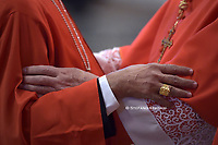 Pope Francis Public Consistory new cardinals at the October 5,2019