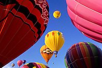 Yellow and reed ballons at the Albuquerque balloon festival foto, reise, photograph, image, images, photo,<br />