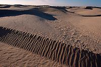 Dünen bei Douz, Tunesien