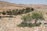 Ain Wif Oasis, Libya - Site of a Roman bath for a military outpost, south of Tripoli, on the Jebel Nafusa