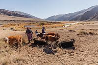 Asia Mongolia, Altai mountain,Saikhsai, family of the hunter Saelikhan