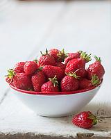 Gastronomie Générale/ Fraise guariguette //  Woodland strawberry, Fragaria vesca