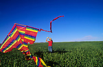 Kite flying in a country field, California Valley
