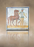Roman geometric floor mosaic depicting Green Faction Charioteer and his horse from the Circus  from  a room of a villa  in the locality Baccano near the Via Cassia, Rome. Beginning of the 3rd century AD. National Roman Museum, Rome, Italy