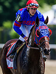 June 07, 2014: Social Inclussion with Irad Ortiz Jr. up at the Woody Stevens Stakes at Belmont Park in Elmont New York. Alex Evers/ESW/CSM