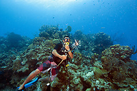 Dive master carrying a dead lionfish on a spear. Dive masters in Belize are encouraged to kill Lionfish, which are Pacific Ocean fish introduced into the Caribbean, and which kill endemic caribbean species
