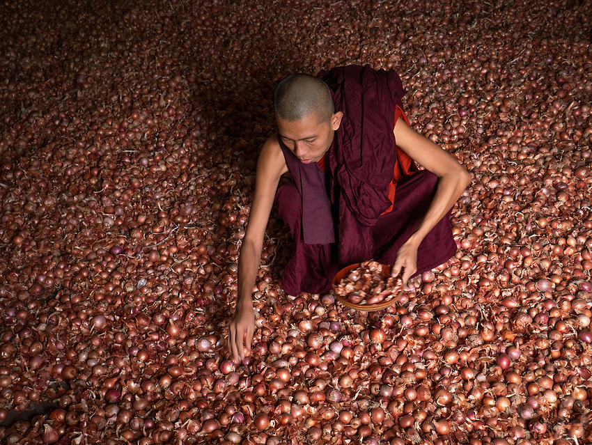 A Monastery in Sagaing, Mandalay, Myanmar A buddhist Monk sorting out the Onions in the store room