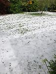 NELSON, NEW ZEALAND - Massive Hail storm hits Motueka. Boxing Day 26 December 2020. Motueka (Photo by Chris Symes/Shuttersport Limited)