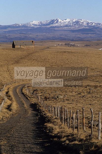 Europe/France/Auvergne/15/Cantal/Parc Naturel Régional des Volcans/Env de Ségur des Villas: Buron et le puy de Sancy (1885mètres)