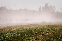 where's the peloton? ...racing in a duststorm<br /> <br /> 92nd Schaal Sels 2017 <br /> 1 Day Race: Merksem > Merksem (188km)