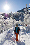 Germany, Bavaria, Upper Bavaria, Winter in Werdenfelser Land: winter scenery at Upper Isar Valley - woman Nordic Walking