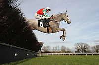 Race winner Elenika ridden by Ruby Walsh in jumping action during the Tom Jones Memorial HTJ Centre Ltd Beginners Chase - Horse Racing at Huntingdon Racecourse, Brampton, Cambridgeshire - 13/11/12 - MANDATORY CREDIT: Gavin Ellis/TGSPHOTO - Self billing applies where appropriate - 0845 094 6026 - contact@tgsphoto.co.uk - NO UNPAID USE.
