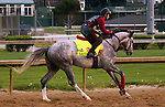 LOUISVILLE, KY - APRIL 19: Lani (Tapit x Heavenly Romance, by Sunday Silence) gallops two miles at Churchill Downs, Louisville KY.Owner Ms. Yoko Maeda, trainer Mikio Matsunaga. (Photo by Mary M. Meek/Eclipse Sportswire/Getty Images)