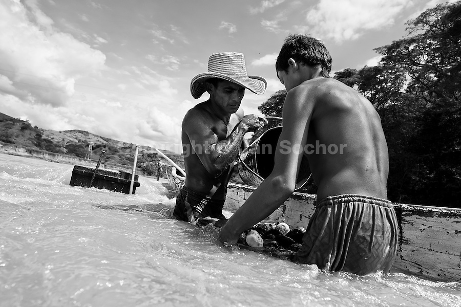 A Colombian sand miner with his son unload a bucket full of gravel into their boat anchored in the middle of the river La Vieja in Cartago, Colombia, 8 February 2013. Artisanal (unmechanised) sand mining is an ancient mining technique used to obtain sand for construction purposes. Depending on the natural conditions (strength of the stream, depth of the river etc.), together with the sand miners' physical condition, the material is extracted in metal buckets, either by standing on the river bottom and searching for sand by feet, or, diving up to 3-5 meters deep using a wooden plank with steps. In spite of the physically demanding work, a sand miner's daily salary does not exceed 15-20 US dollars. However, the sand miners are very proud of their profession, valuing their work freedom above all, and usually, as long as their health and strength permit, they keep facing the river stream.