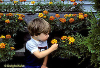 FA01-034z  Child reacting to smell of marigolds