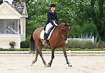 10 July 2009: Edith Lee riding Ballycormac Petrocelli during the dressage phase of the CIC 2* Maui Jim Horse Trials at Lamplight Equestrian Center in Wayne, Illinois.