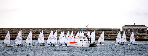 Lasers shaping up for a DBSC start. Dinghy numbers were up in 2020, despite the racing being confined to the harbour