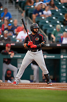 Rochester Red Wings Wilin Rosario (20) bats during an International League game against the Buffalo Bisons on August 26, 2019 at Sahlen Field in Buffalo, New York.  Buffalo defeated Rochester 5-4.  (Mike Janes/Four Seam Images)