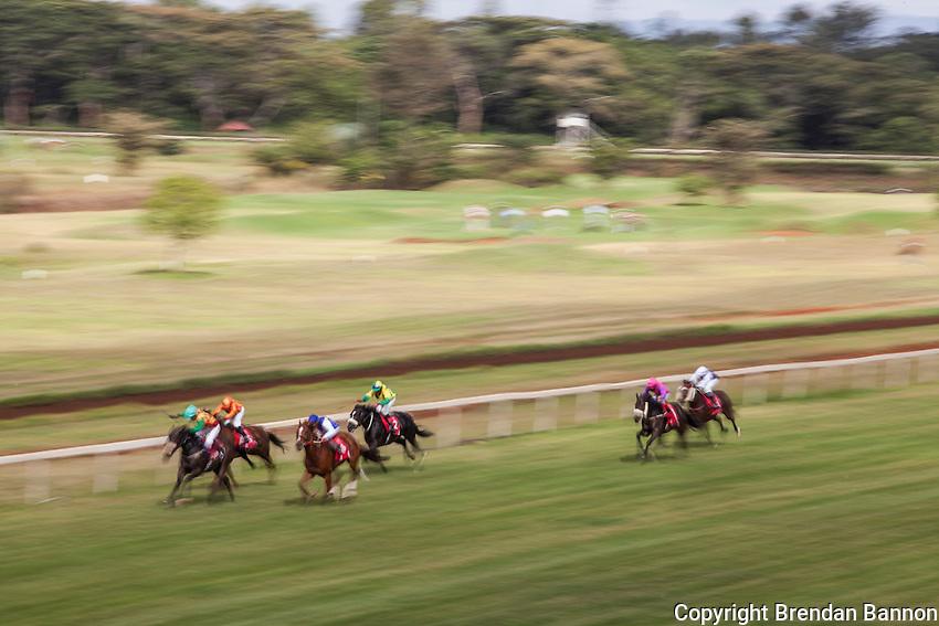 Horses race to the finish at Ngong Racecourse in Nairobi, Kenya. March 17, 2013 Photo: Brendan Bannon