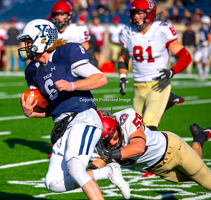 """November 23, 2019: #6 Kurt Rawlings passed for 417 yards and ran for 62 in a stunning comeback that mirrored 1968, the Yale Bulldogs defeat Harvard in double """"OT"""" 50-43.  Yale came from down 17 late in the fourth quarter, including recovering an onside kick with a minute left at the Yale Bowl in New Haven Connecticut.Dan Heary/Eclipse Sportswire/CSM"""