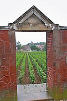 Domaine Philippe Livera, Gevrey Chambertin, Cote de Nuits, d'Or, Burgundy, France