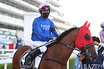 March 27, 2021: MAN OF PROMISE, #4 in the post parade for the Al Quoz sprint on Dubai World Cup Day, Meydan Racecourse, Dubai, UAE. Shamela Hanley/Eclipse Sportswire/CSM