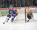 Schwenninger Wild Wings - Grizzlys Wolfsburg 07.02.2020