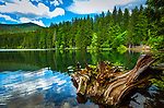 Deutschland, Bayern, Niederbayern, Naturpark Bayerischer Wald, Grosser Arbersee, zwischen Bayerisch Eisenstein und Bodenmais | Germany, Bavaria, Lower-Bavaria, Nature Park Bavarian Forest, Great Arber Lake
