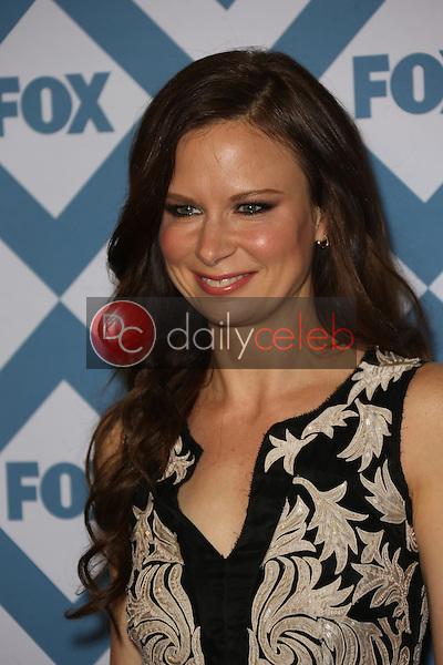 Mary Lynn Rajskub<br /> at the FOX All-Star Party Winter 2014 TCA Press Tour, Langham Hotel, Pasadena, CA 01-13-14<br /> David Edwards/Dailyceleb.com 818-249-4998