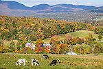 Autumn view from East Warren Rd, Warren, VT, USA