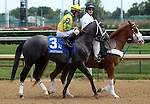 June 21, 2014:  Shown here in post parade, two year old filly Promise Me Silver and jockey Robby Albarado wouild win the six furlong Debutante Stakes at Churchill Downs.  Owner Robert G. Luttrell, trainer Bret Calhoun. ©Mary M. Meek/ESW/CSM