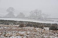 Snow and farm near Botton Head, Lancashire between High Bentham and Slaidburn.