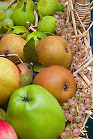 Harvested fruits and berries apples malus pears pyrus, gooseberries, grapes, figs, in autumn fall, pile of mixed fruit, Granny Smith heirloom apple