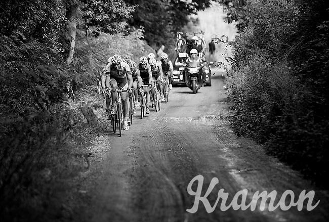 dirt road through the forest<br /> <br /> 1st Dwars door het Hageland 2016<br /> (pics by Léon Van Bon)