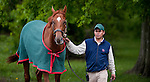 Barn Foreman Noe Lagunas with Animal Kingdom, winner of the 137th Kentucky Derby, at the Fair Hill Training Center on May 18, 2011 in Fair Hill, Maryland.