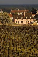 Europe/France/Bourgogne/21/Côte d'Or/Vosne-Romanée: le village et le vignoble