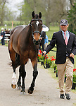 LEXINGTON, KY - APRIL 27: #88 Mighty Nice and rider Phillip Dutton jog before the vets and grand jury during the first horse inspection for the Rolex Three Day Event on Wednesday April 27, 2016 in Lexington, Kentucky. (Photo by Candice Chavez/Eclipse Sportswire/Getty Images)