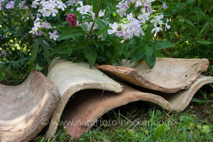 Dachziegel, Dachziegeln, alte Ziegel dienen mit ihren Hohlräumen als Unterschlupf, Lebensraum, Versteckmöglichkeit für Tiere im Garten, Tierfreundlicher Garten, Naturgarten, Roof tiles, serve with their cavities as shelter, habitat for animals in the garden, natural garden