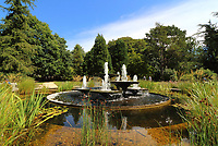 JUL 30 Cambridge University Botanical Gardens