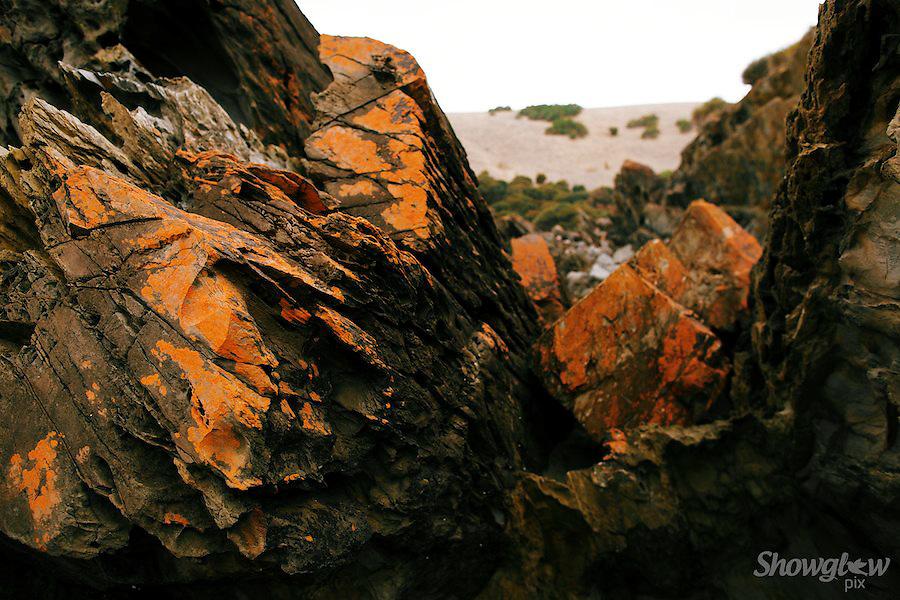 Image Ref: CA086<br /> Location: Vivonne Bay<br /> Date: 21st April 2014