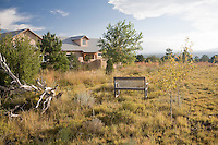 Xeriscape New Mexico meadow garden with bench in High Plains short grass prairie native meadow naturalistic landscape near Santa Fe; design by Judith Phillips