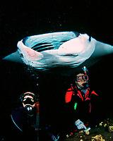 scuba divers and reef manta ray, Mobula alfredi, feeding at night, Kona, Big Island, Hawaii, Pacific Ocean