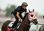 AUGUST 27, 2021: Drayden Van Dyke working a horse at Del Mar Fairgrounds in Del Mar, California on August 27, 2021. Evers/Eclipse Sportswire/CSM