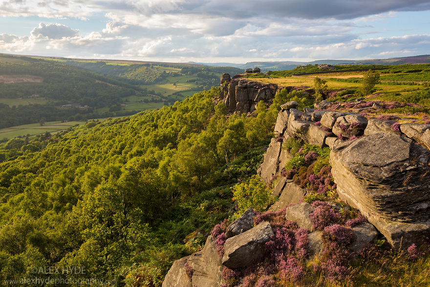 Froggatt Edge, a gritstone escarpment in the Peak District National Park, Derbyshire, UK. August.