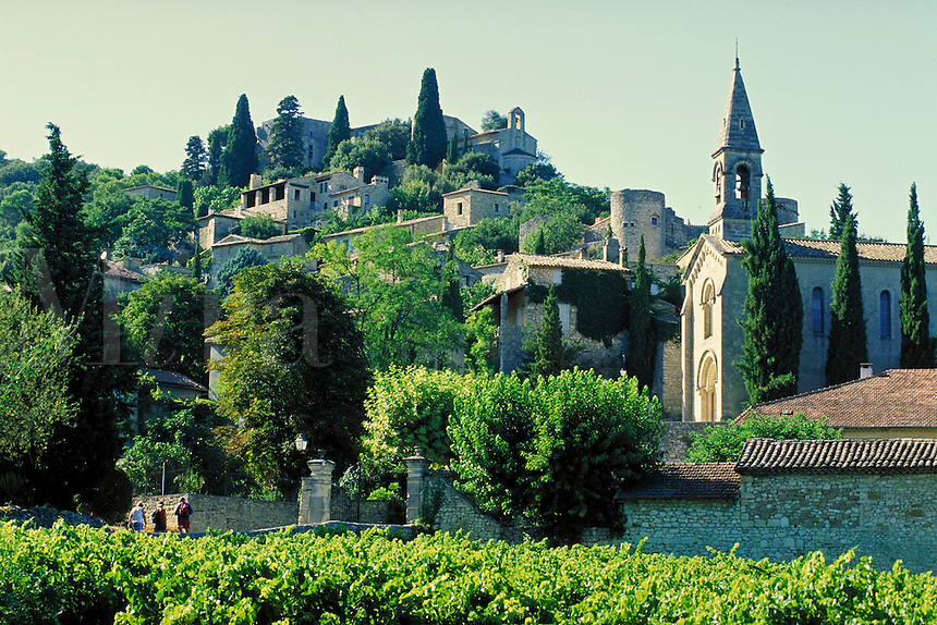 Churches, fortifications and other stone buildings cling to hillside. Small vineyard in foreground; many trees. LaRoque sur Ceze Provence France.