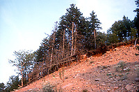 Erosion of a hillside<br />
