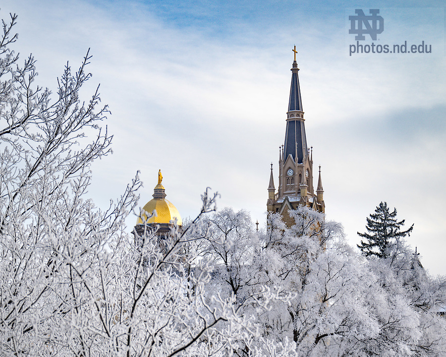 February 17, 2021; Campus trees are covered in a freezing frost. (Photo by Matt Cashore/University of Notre Dame)